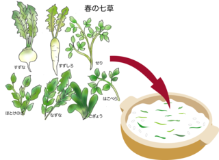 七草粥.png